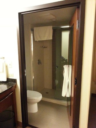Hyatt Place Itasca: Into bathroom.