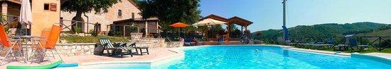 Pergola, Italia: vista piscina