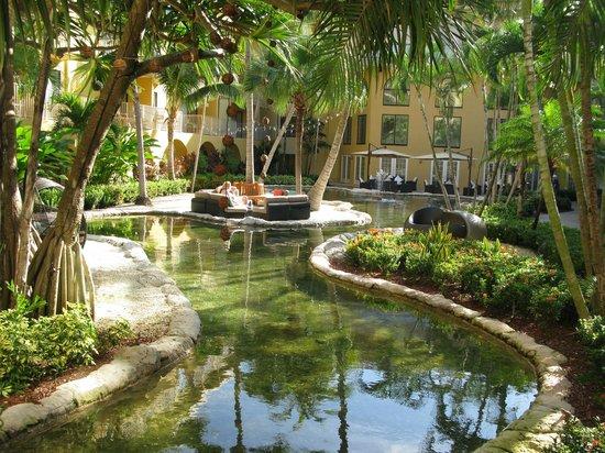 Grand Cayman Marriott Beach Resort: Turtle lagoon on way to beach