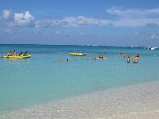 Grand Cayman Marriott Beach Resort: Hotel Shore