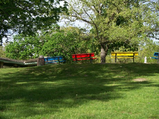 Eagle Point Park: The benches surrounding the spash pad