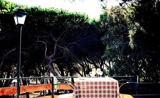 O Pucaro : Terrace