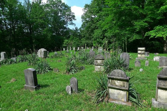 Pricketts Fort State Park : graveyard