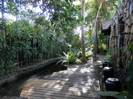 Sunset Beach Resort: Jardin exotique