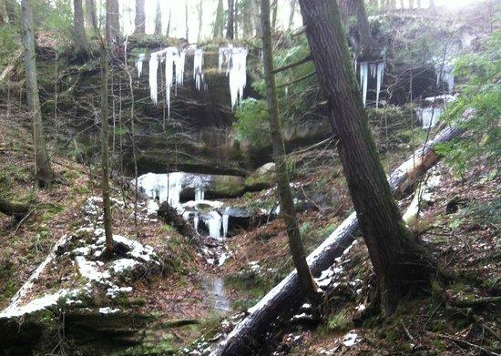 The Inn & Spa at Cedar Falls: Icicles near Cedar Falls
