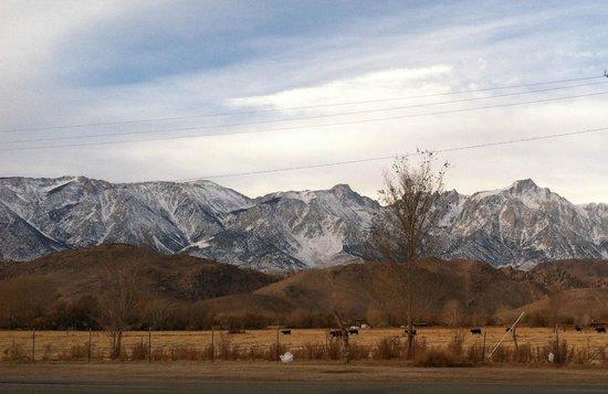 Best Western Plus Frontier Motel: View