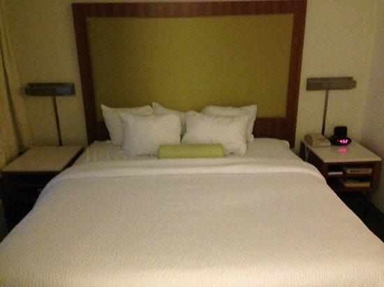 SpringHill Suites Nashville MetroCenter: King bed suite