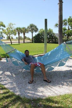 South Beach Condo/Hotel: hammocks