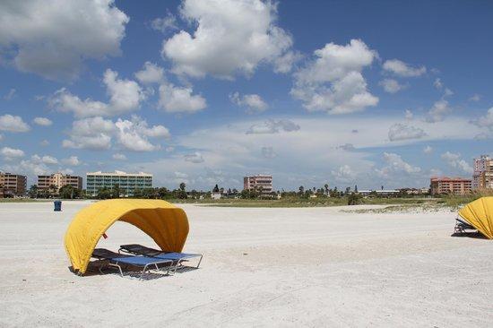 South Beach Condo/Hotel: beach