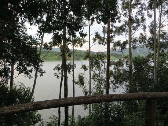 Bushara Island Camp: Vista desde Hab