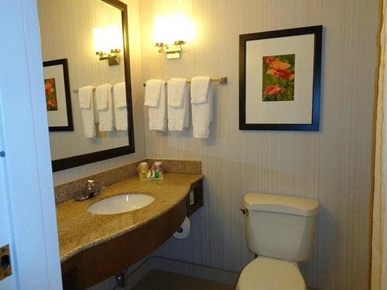 Hilton Garden Inn Fort Worth/Fossil Creek : bathroom