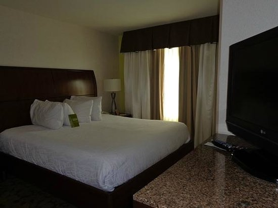 Hilton Garden Inn Fort Worth/Fossil Creek : bed