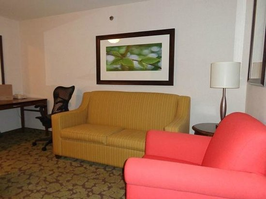 Hilton Garden Inn Fort Worth/Fossil Creek : couch