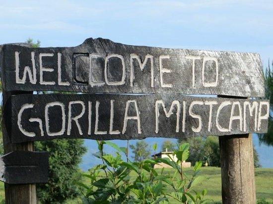 Gorilla Mist Camp : Bienvenida