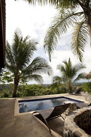 Costa Rica Yoga Spa: Pool area