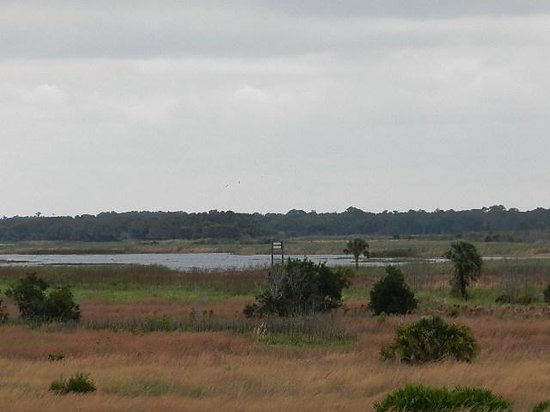 Lake Kissimmee State Park : Open Spaces