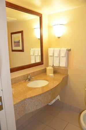 Hilton Garden Inn Fredericksburg: Bathroom