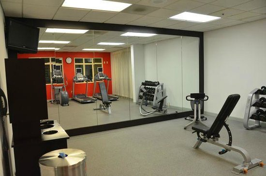 Hilton Garden Inn Fredericksburg: Gym