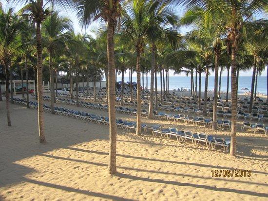 Hotel Riu Vallarta : Beach