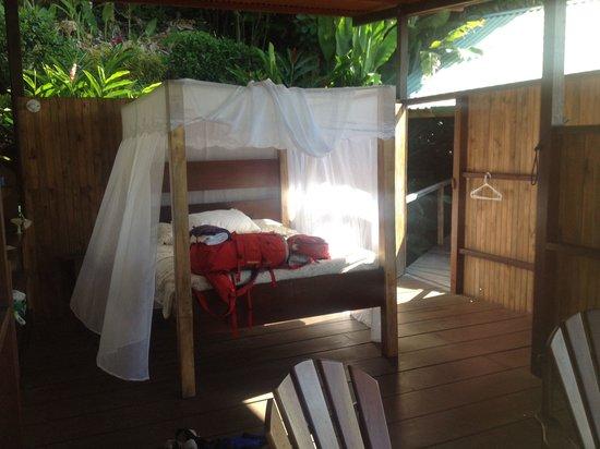 Lookout Inn Lodge : Blue butterfly - foto 2