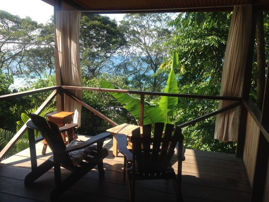 Lookout Inn Lodge : Blue butterfly - foto 3