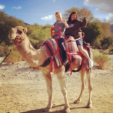 Living Desert Zoo & Gardens : riding the camel!