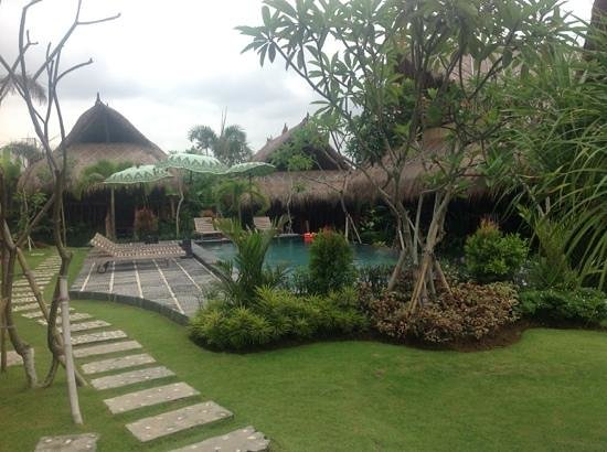 The Calm Tree Bungalow : pool and bungalows