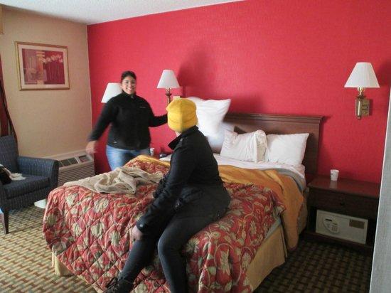 Howard Johnson Inn Clifton NJ: Bedroom