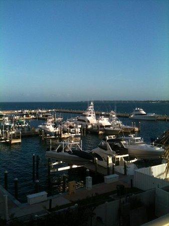 Paradise Harbour Club & Marina: harbor