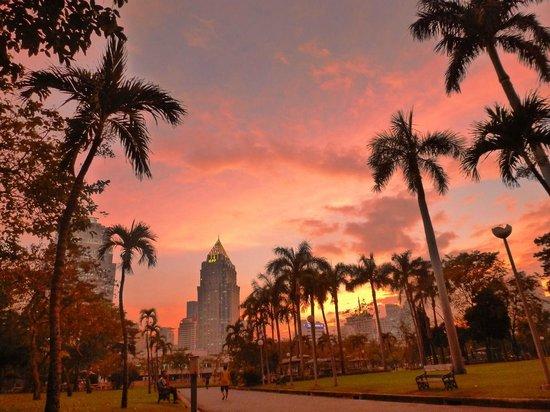 Lumpini Park: pretty view