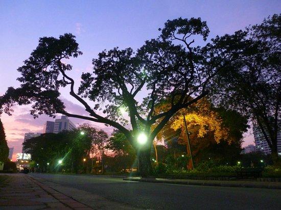 Lumpini Park: very cool lights