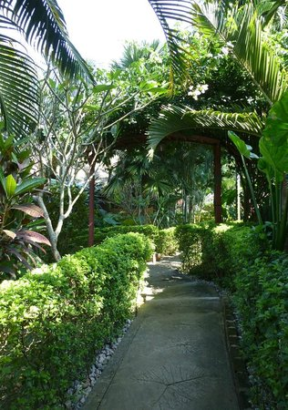 Thongbay Guesthouse: Pathway to the riverside bungalows