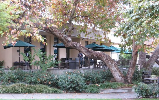 California Institute of Technology: the cafeteria's patio