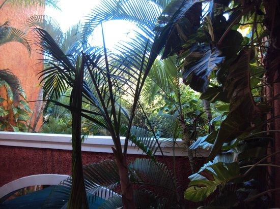 Barcelo Maya Beach: View from inside hotel