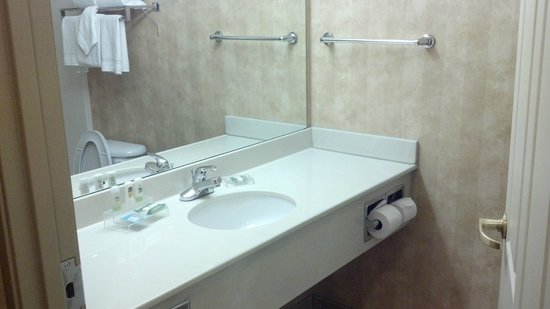Country Inn & Suites by Radisson, Elk Grove Village/Itasca : No Frills Bathroom