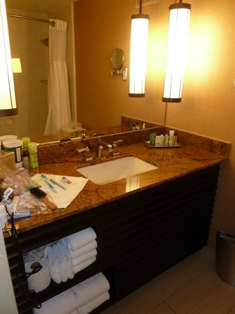 Hilton San Diego Resort & Spa: Bathroom