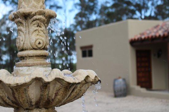 Casa La Vina: Fountain