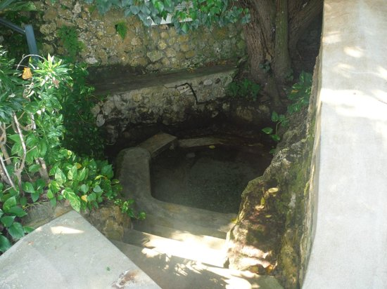 Couples Sans Souci: The view of the spring. It has little fishes in it