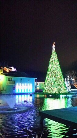 Christmas time in Dollywood - Picture