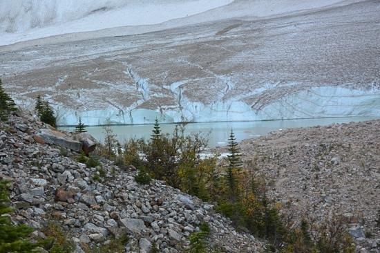 Alpine Village Cabin Resort - Jasper: Athabasca glacier