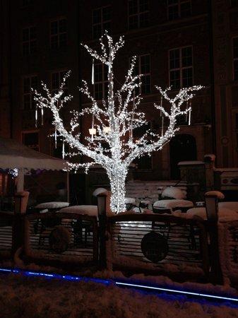 Dluga Street (ul. Dluga): Dluga i desember