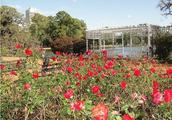 Jardim das Rosas  Picture of Parque 3 de Febrero, Buenos Aires