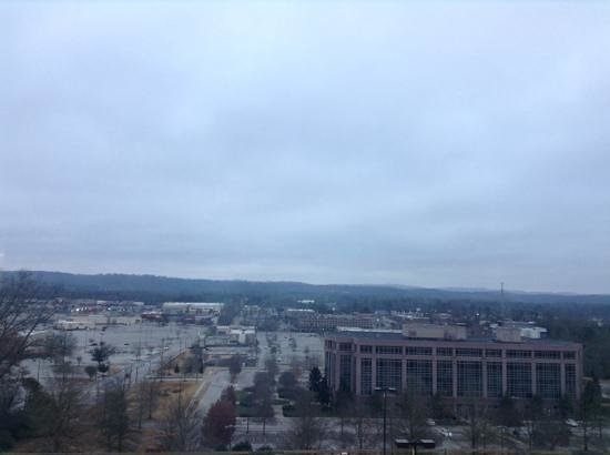 Hampton Inn & Suites Chattanooga/Hamilton Place : View from room 525. Very quiet and peaceful.