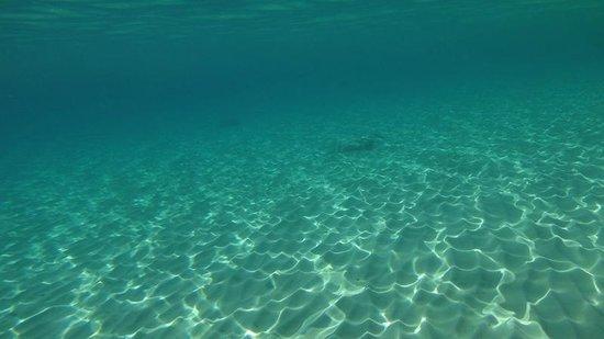 Petinos Beach Hotel : Snorkeling at Paradise Beach