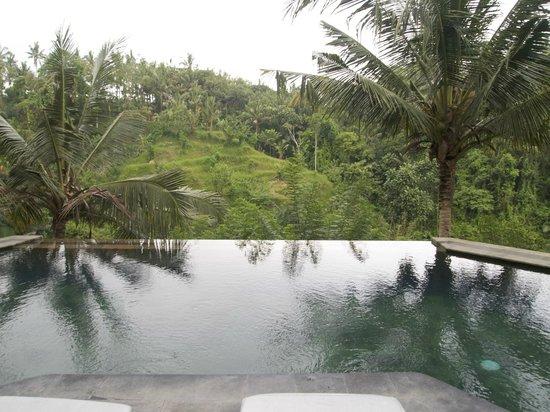 Beautiful pools!