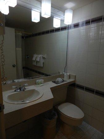 Regency Hotel Miami: Baño
