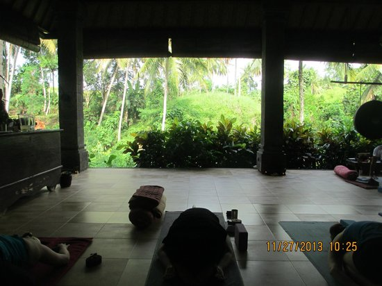 Oneworld retreats Kumara: Cant beat this view when doing yoga.. Watching squirrels in the coconut trees