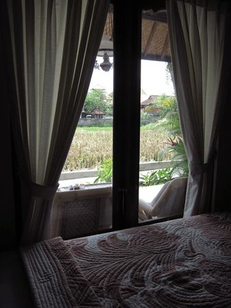 Puji Bungalow: view of paddy field from inside