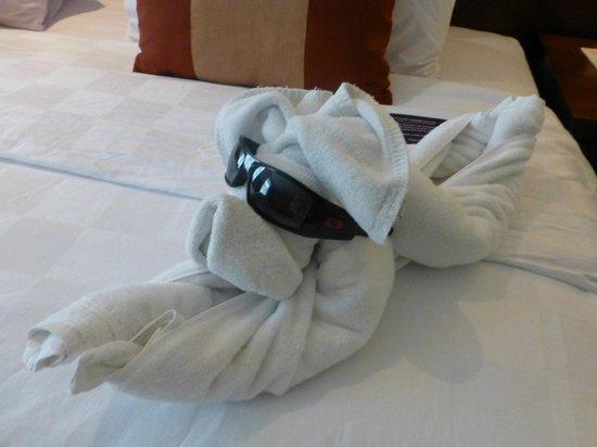 Amadea Resort & Villas : doggy