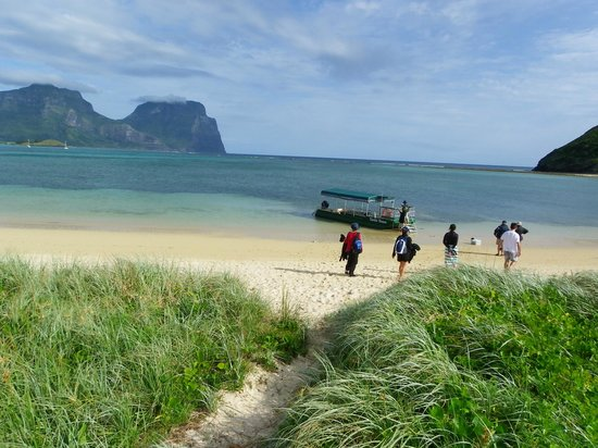 Marine Adventures: beach